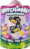 Упаковка интерактивной игрушки Hatchimals Близнецы Питомцы Сюрприз в яйце