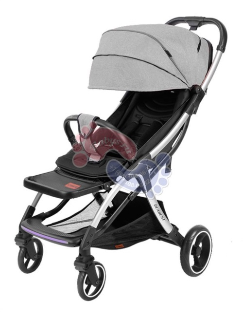 Прогулочная коляска Yoya Dearest A10 Silver 2020 Premium Set Grey